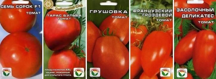 10 крупноплодных томатов для теплиц из поликарбоната и открытого грунта