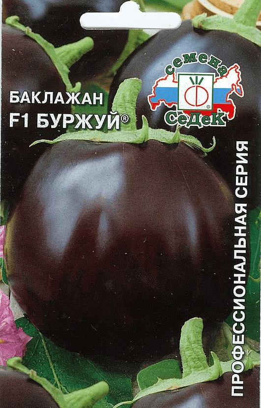 Баклажан буржуй f1: характеристика и описание сорта, отзывы, фото, выращивание