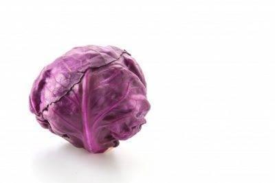 У капусты фиолетовые листья: что делать, чем подкормить