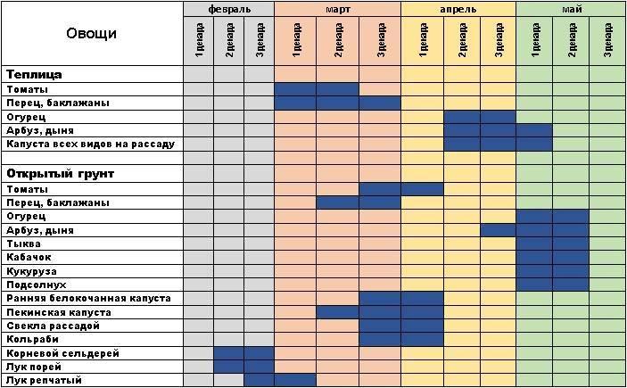 Когда сажать баклажаны на рассаду в 2021 году: сроки посева в благоприятные дни