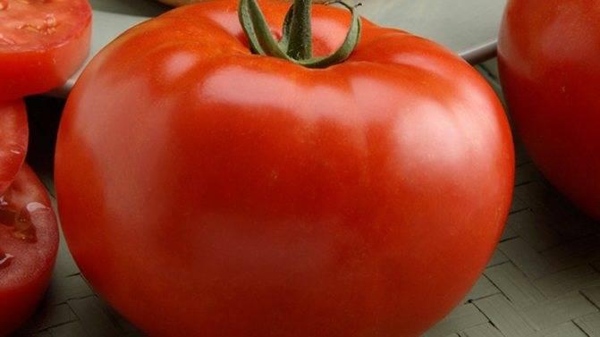 Томат биф f1: выращивание, отзывы, подробное описание с фото