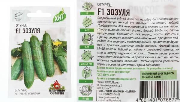 Огурец зозуля - описание сорта, фото, отзывы огородников