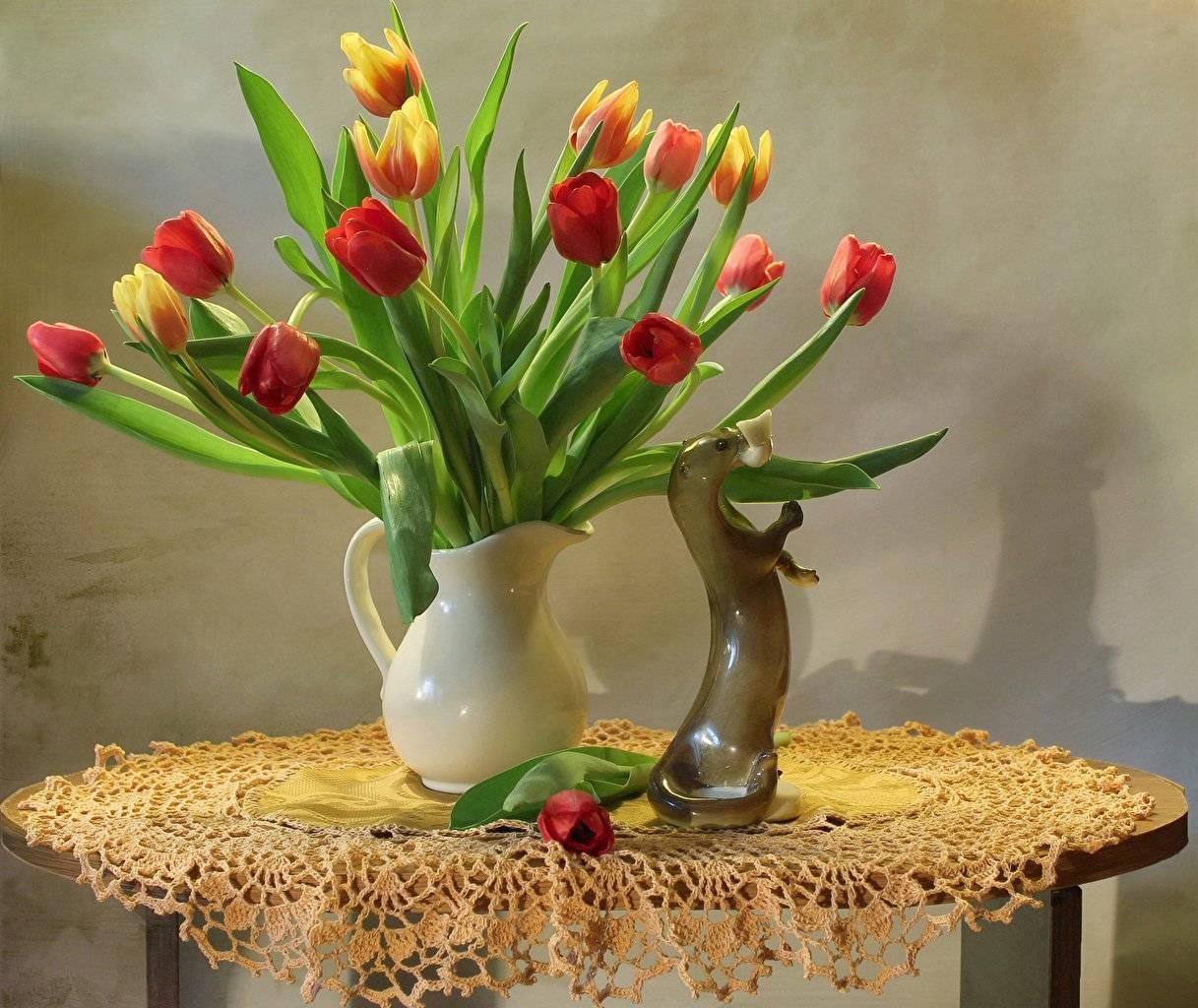 Тюльпаны: хранение луковиц после выкопки в домашних условиях до посадки осенью