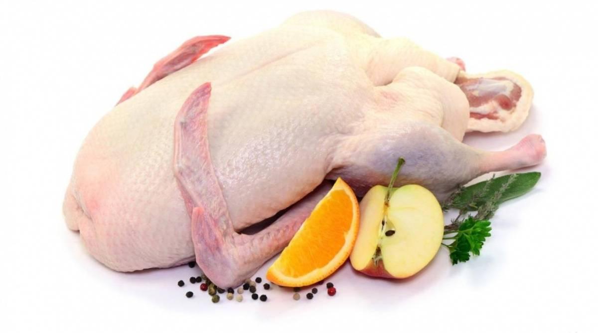 Гусиное мясо: польза и вред для организма