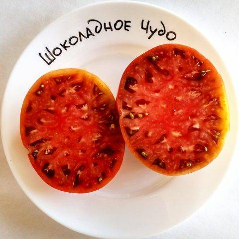 Ещё один тёмный сорт томата — «шоколадное чудо», описание салатного помидора