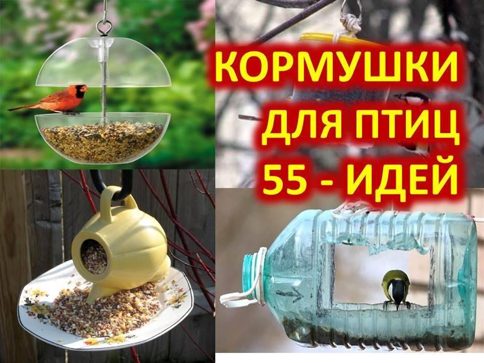 Кормушка для кур из канализационной трубы, а также, вы узнаете, как сделать изделие своими руками из пластиковых, полипропиленовых и пвх компонентов, фото selo.guru — интернет портал о сельском хозяйстве