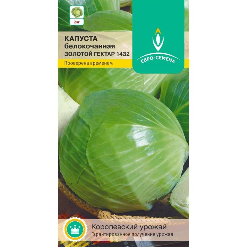 Лучшие сорта капусты белокочанной: их название, описание и фото, отзывы о семенах