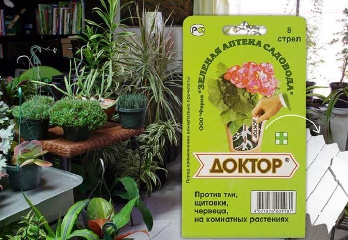 Актара для комнатных растений — инструкция по применению и отзывы