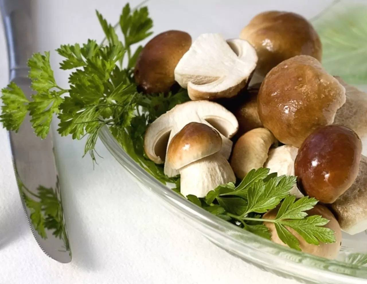 Какие грибы можно есть сырыми: +27 фото, описание и названия