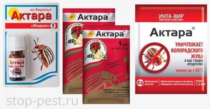 Инсектицид актара - инструкция по применению и расход
