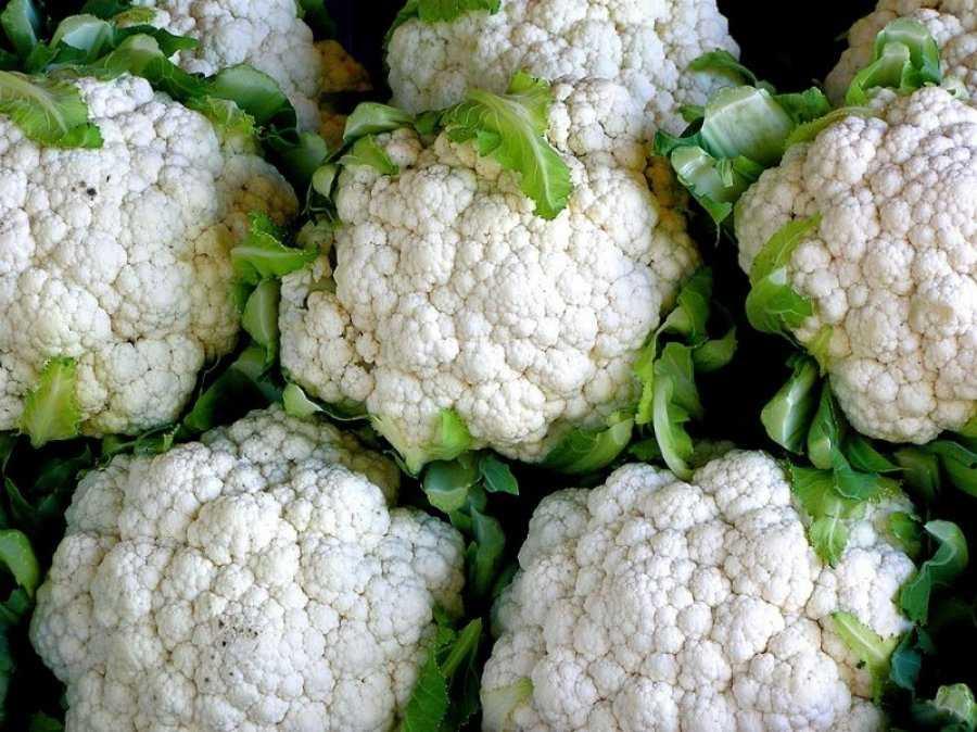 Все о калорийности цветной капусты