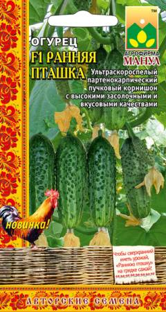 Огурец кузнечик f1 — характеристики, методика выращивания, реальные отзывы