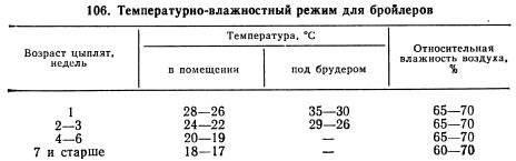 Как подобрать температурный режим для бройлеров с учетом их возраста