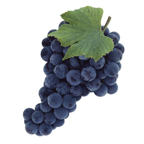 Калорийность винограда ? на 100 гр по сортам. польза и вред винограда для здоровья