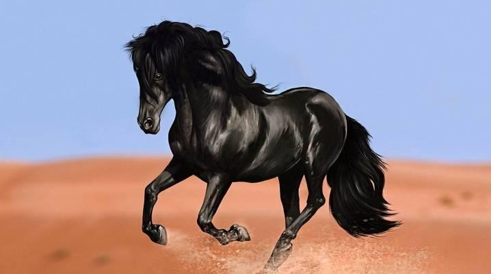 Клички лошадей: имена знаменитых коней, советы по выбору клички