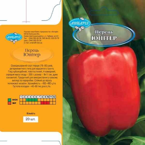 Перец юпитер: описание сорта, урожайность, особенности выращивания