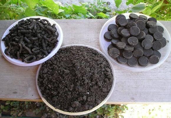 Сапропель - как использовать илистое удобрение?