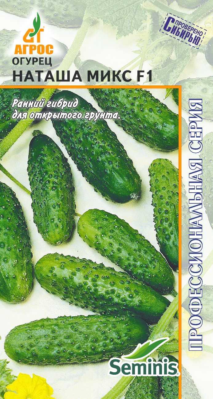 Огурцы наташа f1: отзывы и описание сорта, выращивание и уход, болезни и вредители