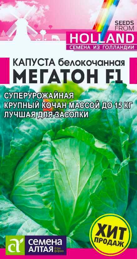 Характеристика капусты сорта пруктор ф1