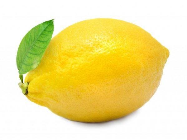Апельсин: полезные свойства для организма человека