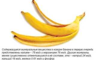 Банановая кожура — ценное средство для комнатных растений