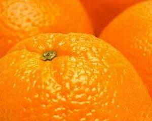 Калорийность апельсинов, витаминный состав и баланс бжу