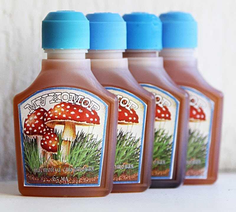 Настойка мухомора: на спирту и водке, от чего помогает, применение