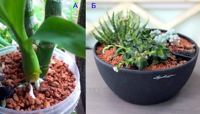 «серамис», гранулированный грунт для выращивания растений