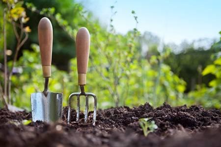Сухой и жидкий биогумус: что это такое и как использовать эко-удобрение, плюсы и минусы натурального средства