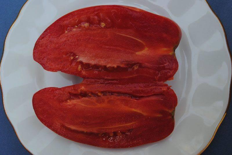 """Томат """"перцевидный гигант"""": характеристика и подробное описание сорта помидор с фото, отзывы об урожайности"""