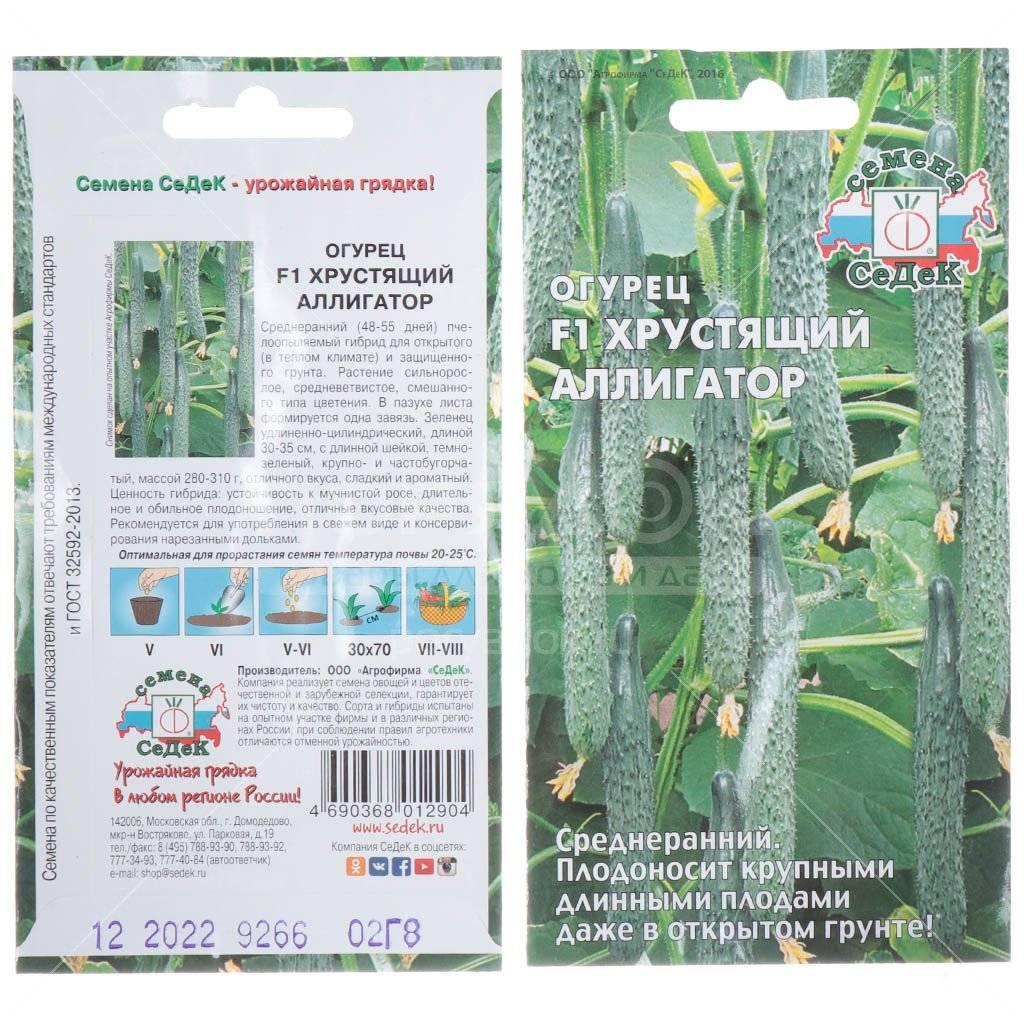 Сорт огурцов аллигатор: описание, отзывы, фото, выращивание