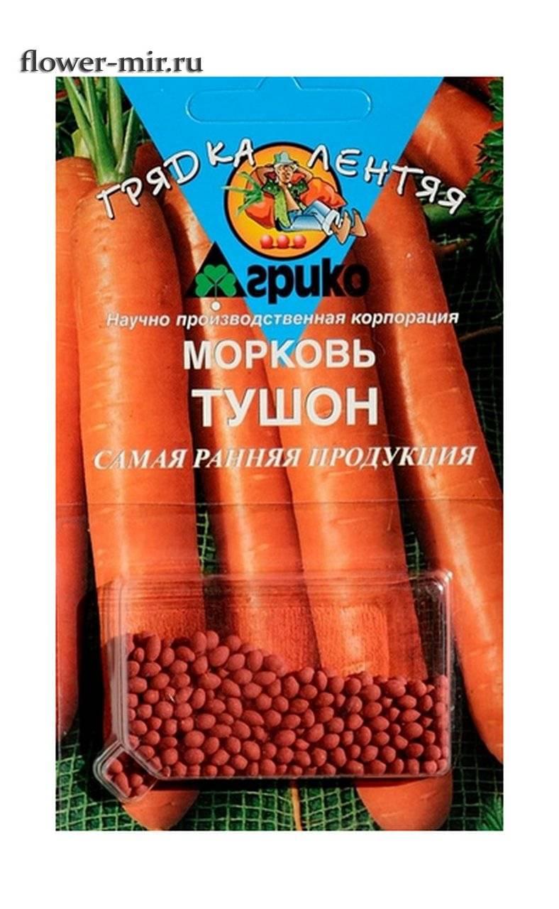 Морковь тушон — описание сорта, фото, отзывы, посадка и уход
