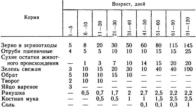 Чем кормить перепелят в первые дни жизни рацион - дневник садовода amparagroup.ru