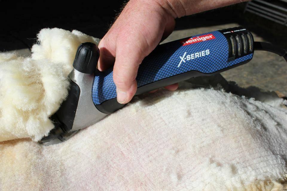 Какой должна быть машинка для стрижки овец?