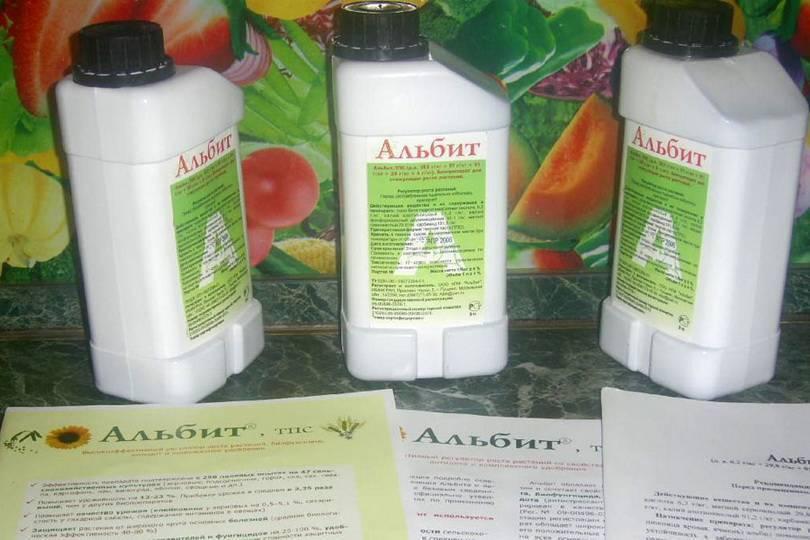 """Фунгицид """"альбит"""": инструкция по применению для растений, описание, отзывы, когда обрабатывать"""