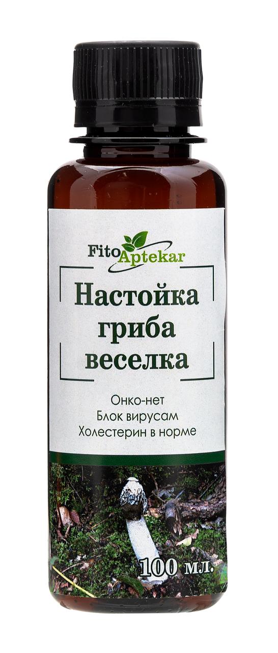 Необычный и очень полезный гриб весёлка: описание, много фото. где растет в россии, как собирать и применять