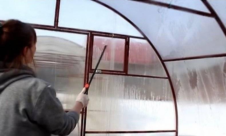 Чем обработать теплицу осенью: работы в теплице после сбора урожая | инфо сад