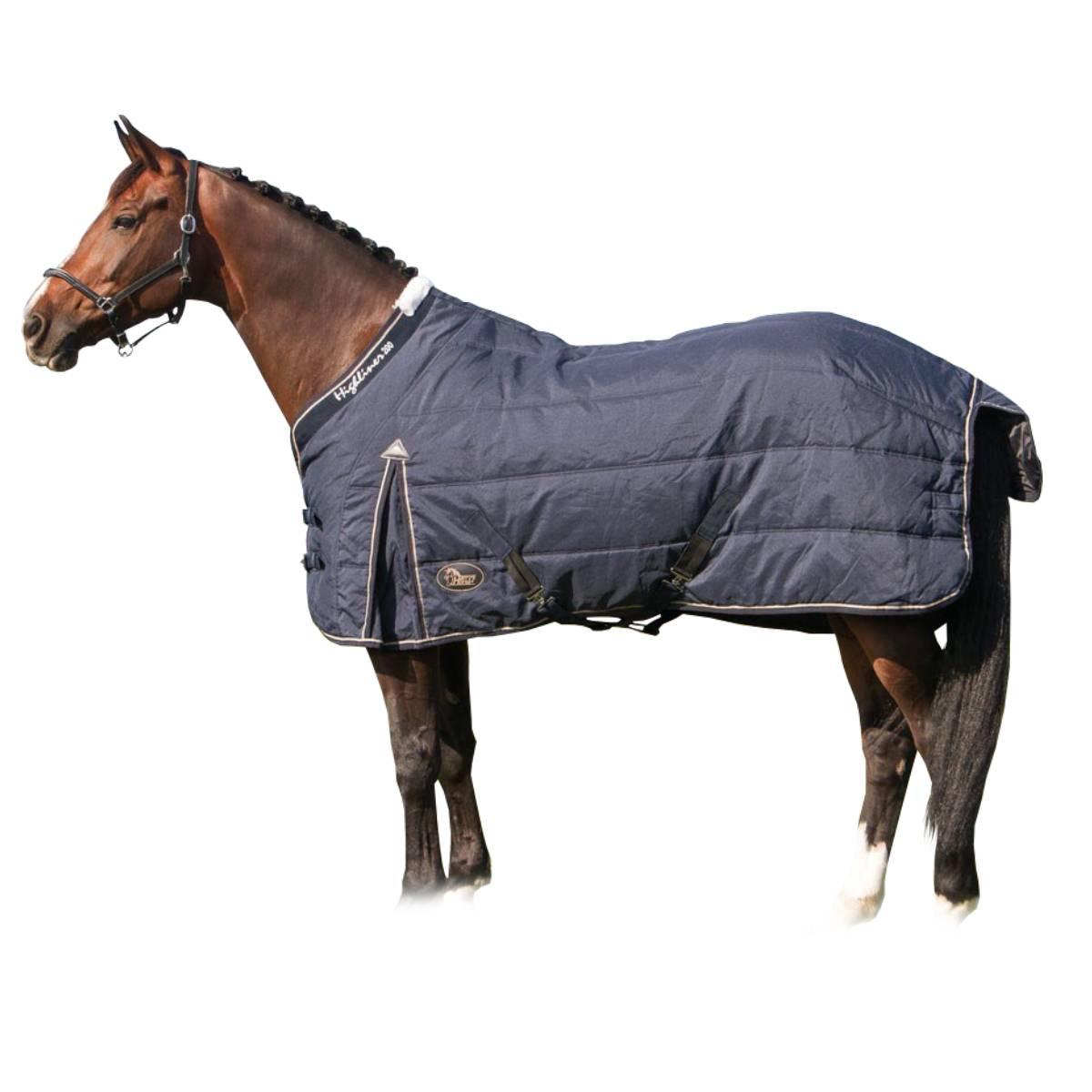Попона для лошади: виды (зимняя, дождевая, антимоскитная), как сделать своими руками