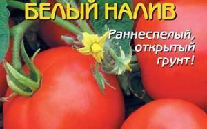 Томат белый налив: отзывы, фото, урожайность, описание сорта
