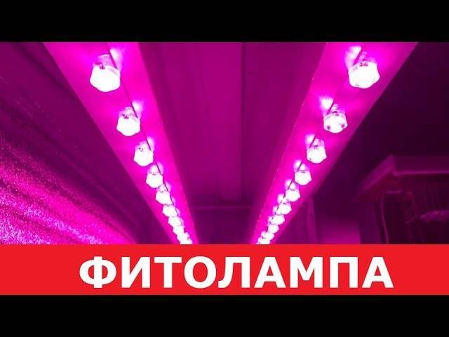 Как сделать светодиодную фитолампу для растений своими руками