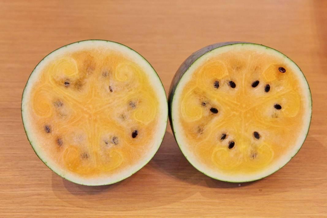 Гибрид лимона и апельсина: название, фото