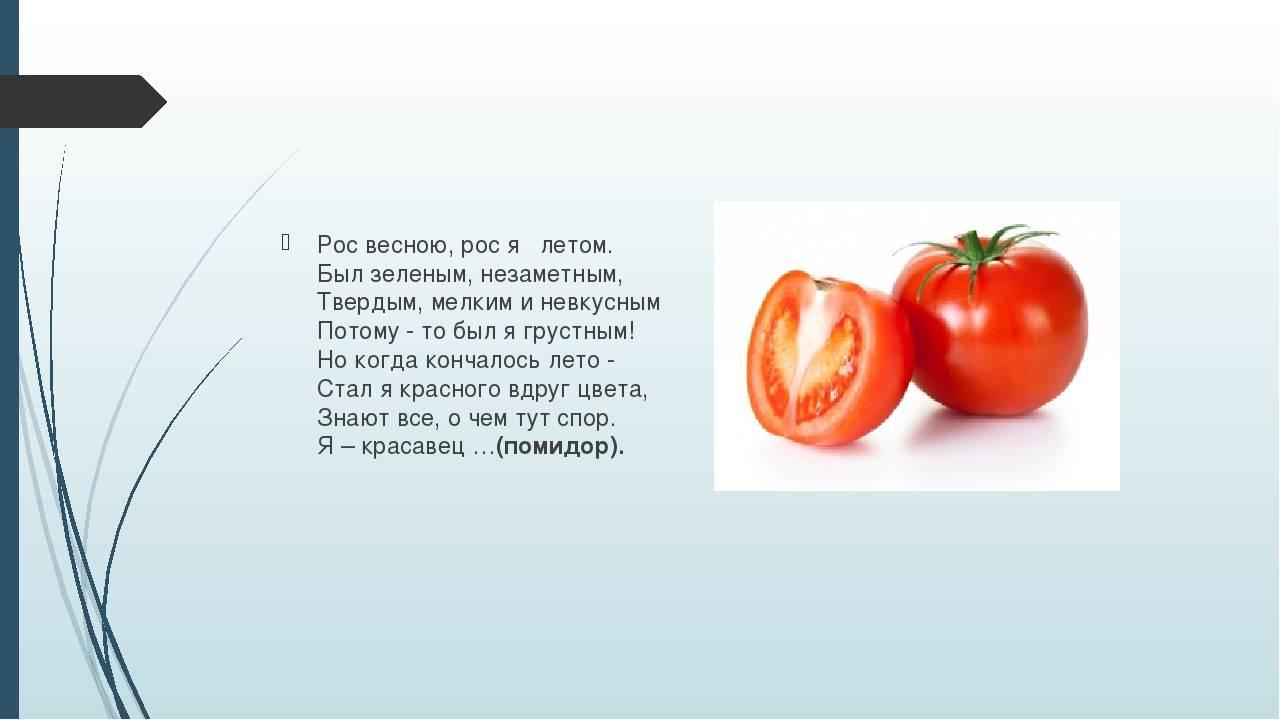 Чем является помидор — овощем, ягодой или фруктом