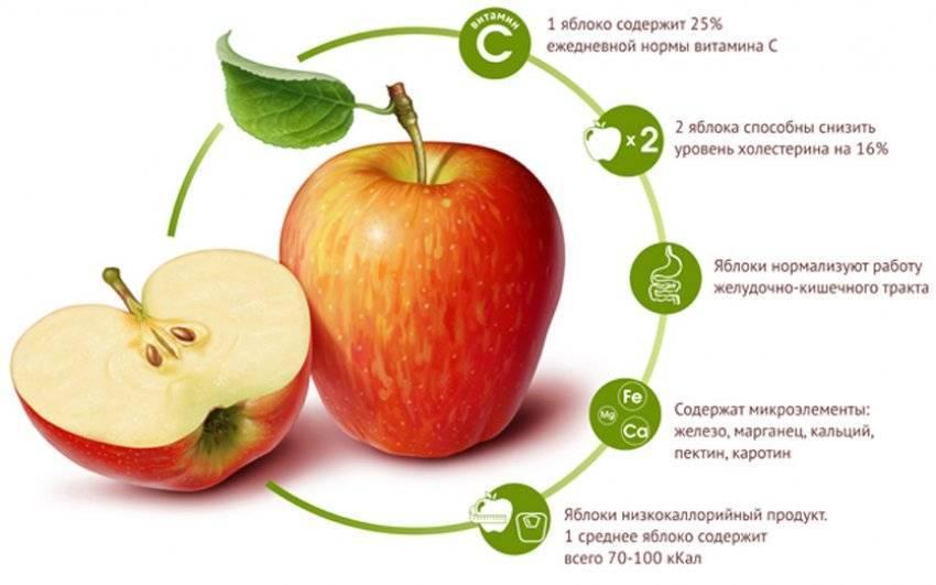 Что нужно знать о сахаре во фруктах - medical insider
