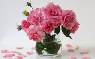 Как сохранить срезанные розы надолго, в домашних условиях - инструкция с фото и видео
