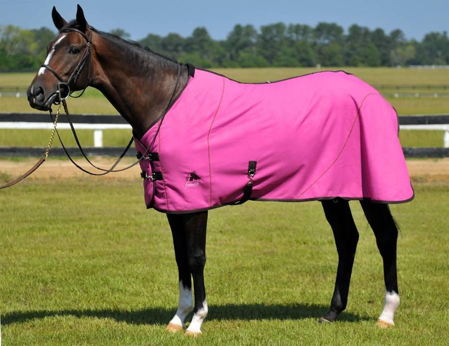 Что такое попона для лошади, как сшить накидку для коня своими руками?