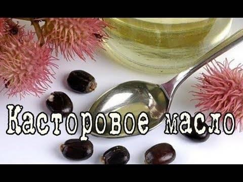 Подкормка касторовым маслом для обильного цветения