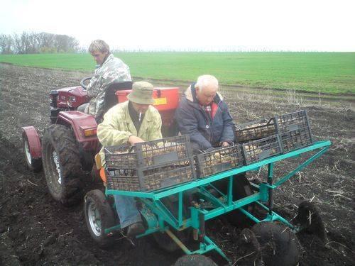 Картофелесажалка для минитрактора: самодельная сеялка по чертежам своими руками, для трактора мтз 82, с гидравликой, сделать сажалку медема 42 передней навески