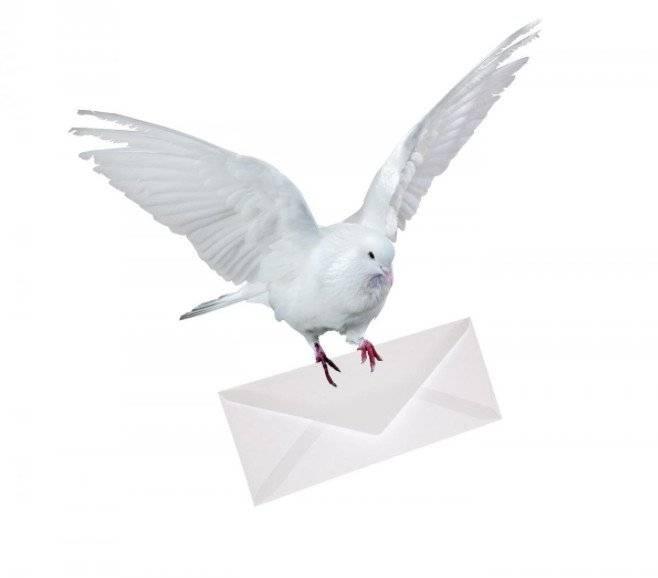 Голубиная почта — википедия