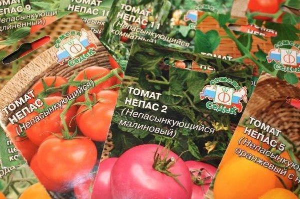 Томат непас 2 непасынкующийся малиновый седек: описание сорта, особенности выращивания, отзывы о помидоре