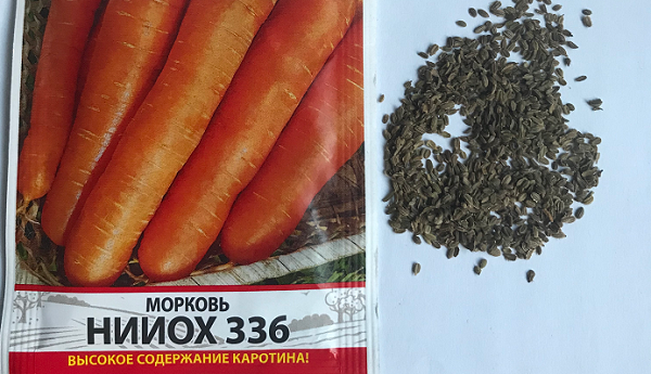 Лучшие способы добиться хорошего урожая. как замочить семена моркови перед посадкой?